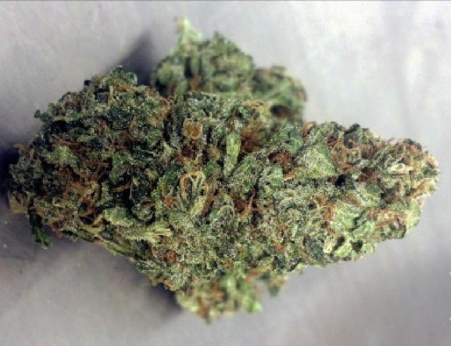 Blueberry Haze weed